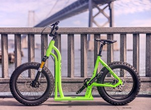 MooxBike_BayBridge_Closeup