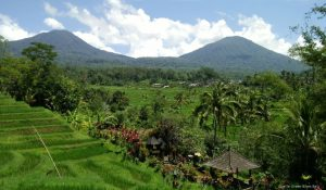 landscape-Jatiluwih-nature-mountains-Green Bikes Bali-Green Cafevolcanoes-cycling-cyclinginbali-UNESCO