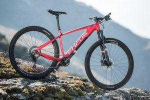 Focus_36h-Alpencross_bike