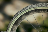 schwalbe-G‑One-Ultrabite-olive