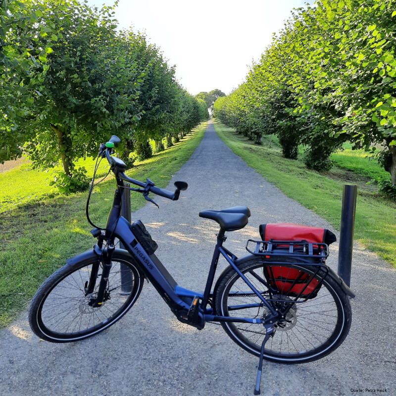 e-bike-pegasus-evo-strong-lite-schloss-bohtmer
